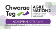 Chwarae Teg FairPlay Employer Award